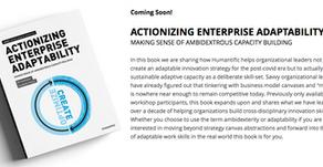 Actionizing Enterprise Adaptability