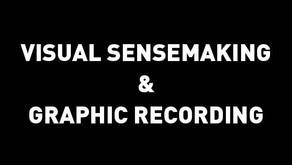 Understanding Visual SenseMaking