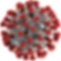 1200px-2019-nCoV-CDC-23312 (2).png