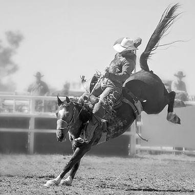 bigstock-A-Cowboy-Rides-A-Bucking-Horse-