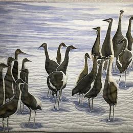 A  Sedge of Cranes