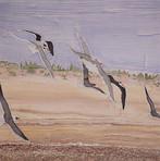 Tybee Island Birds, 2018