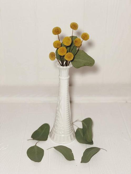Bella Vases