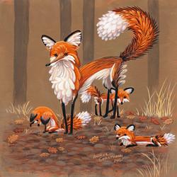 fox s