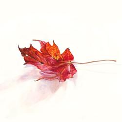 AG leaf5