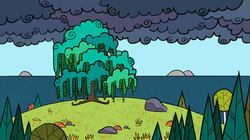 O1_Turtle Island_Willow