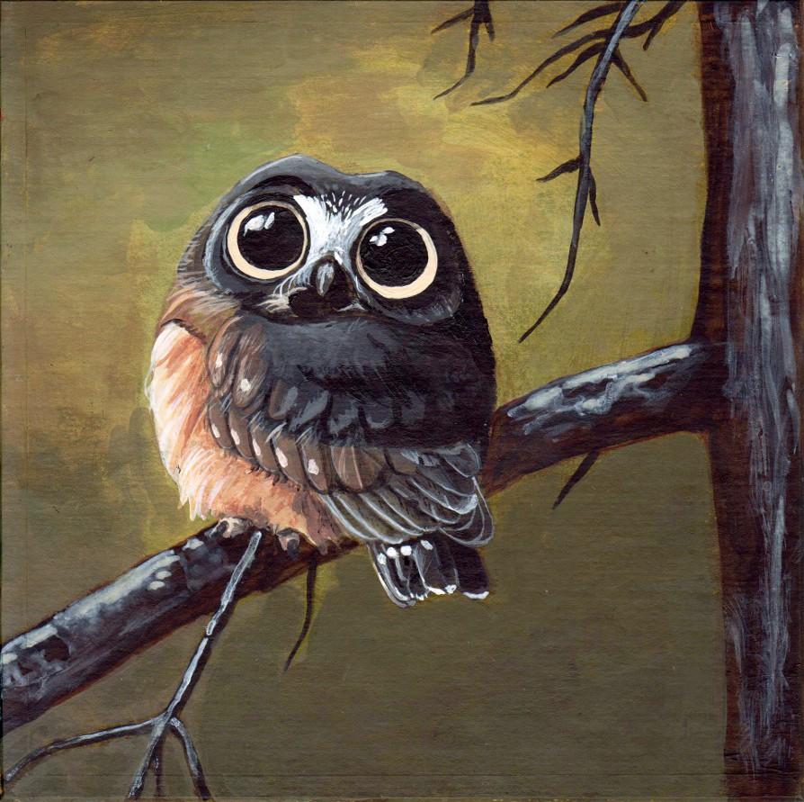 owl2 s