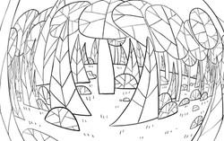 Q8 Forest_FishEye