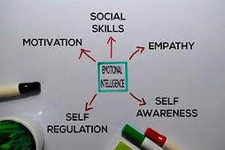 Applying Emotional Intelligence 320.jpg