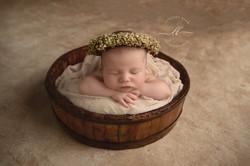 Newborn Baby Girl Painted Tan Backdrop N