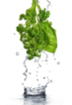 water-drops-on-green-spinach-and-parsley