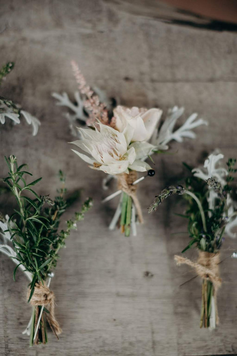 Blushing Bride Protes Boutonniere