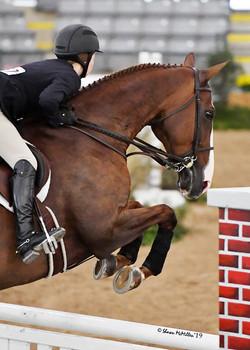 Armada Zone V Horsemanship Challenge