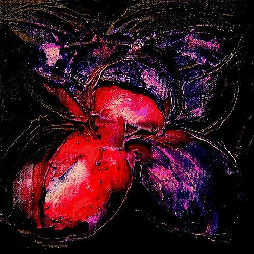 Schwarze Blume II (2011)