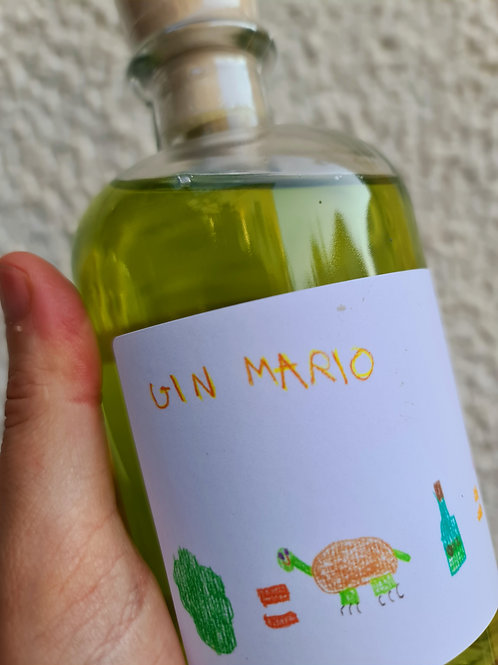 GIN MARIO