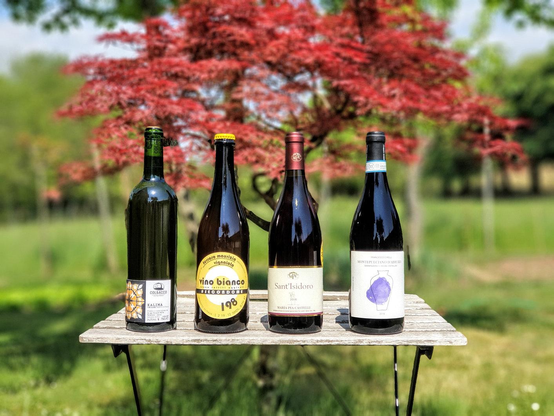vino anfora vino naturale vino biodinamico vino vero sunawi