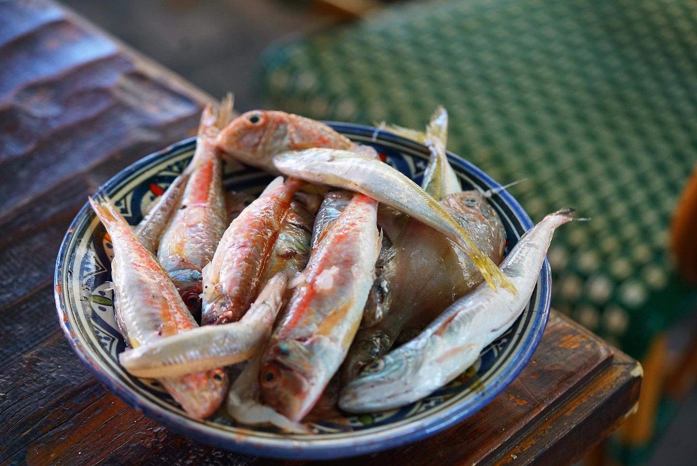 pesce di paranza pesce lago di garda lake garda fish la dispensa san felice