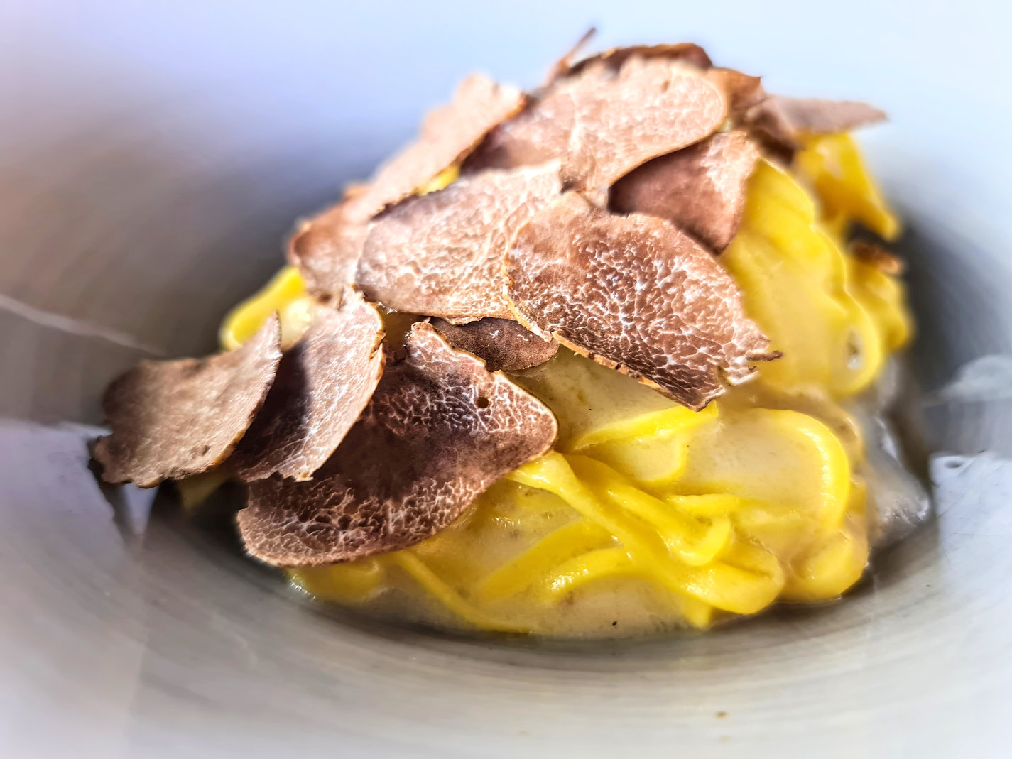 white truffle italy alba white truffle tartufo bianco