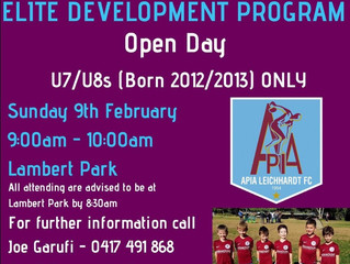 APIA ELITE DEVELOPMENT PROGRAM 2020 U7/U8's