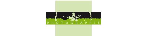 Sarah Marquis logo.png