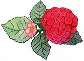 Logo_multi_Véronique_Beaulne.png