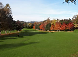 golf-vezac.jpg