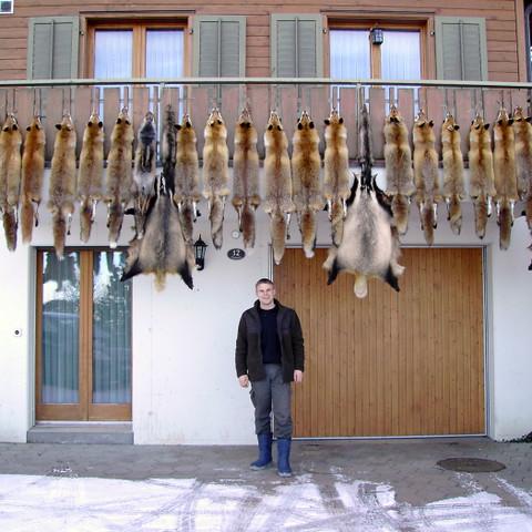 Gregor ist bereit für den Pelzfellmarkt