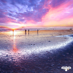 Coronado Sunsets