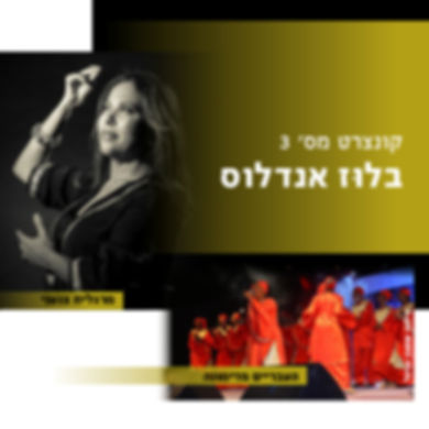 box-web-concert-11.jpg