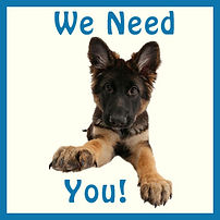 We Need You Puppy.jpg