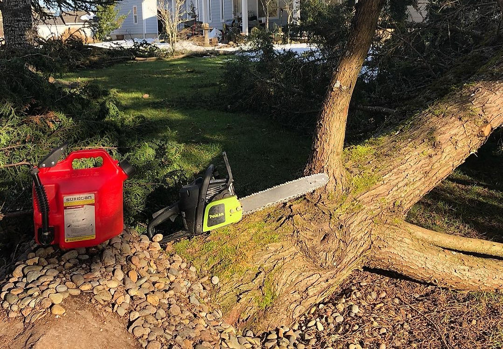 Fallen Trees SureCan Chainsaw