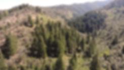 Backcountry Photo.jpg