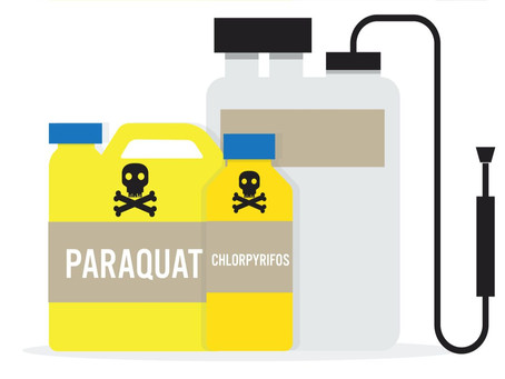 Widely Used Herbicide, Paraquat, Potentially Linked with Parkinson's Disease