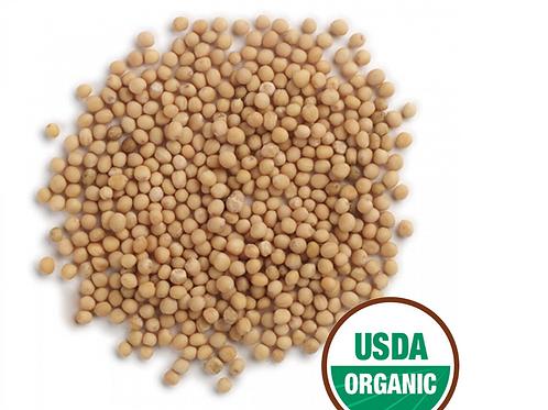 Mustard Yellow Seed Organic