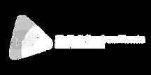 Kopie van mst logo.png