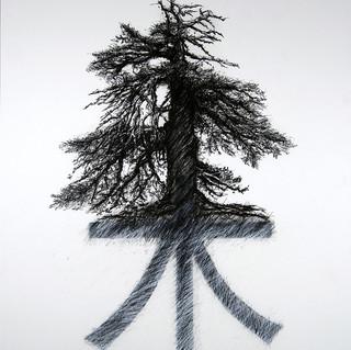 Tree Shùmù 樹木