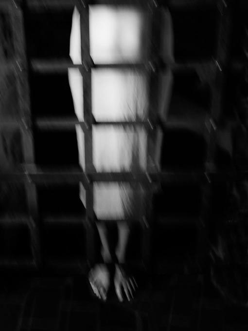 11_Caged.jpg