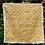 Thumbnail: GOLDEN HUISACHE
