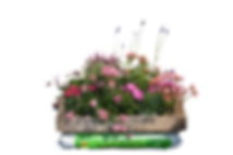 Blumenkiste.png