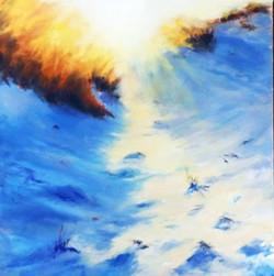 Overflowing Sunlight - Bunker Bay