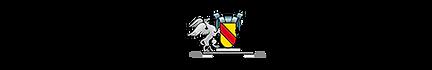 badische-zeitung-logo.png