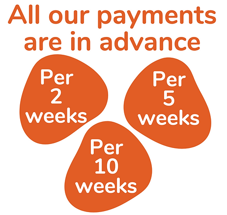 All Our Payments Are In Advance