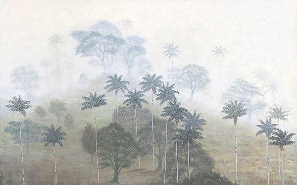 Bosque nublado andino, misty landscape