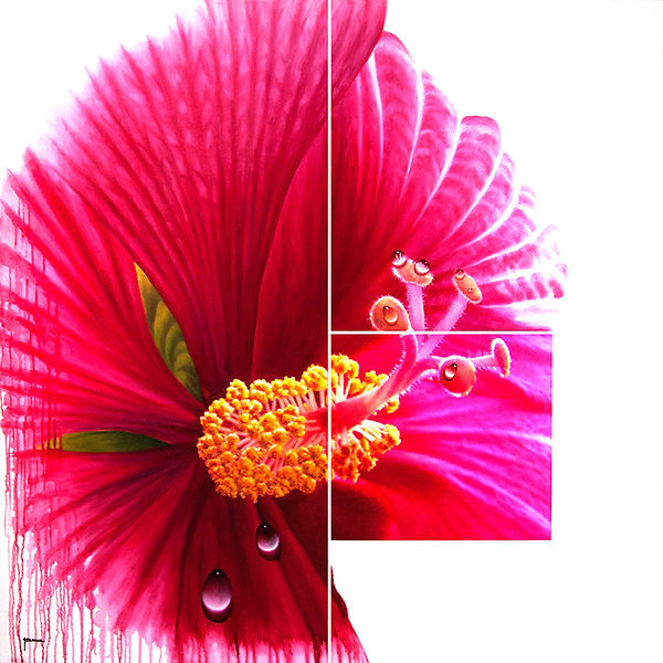 Pink flower, Hybiscus, nature painting