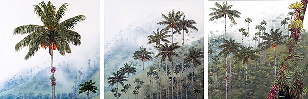 Lndscape, palms in the foggy mountains