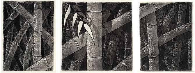 Bamboo, etching and aquatint
