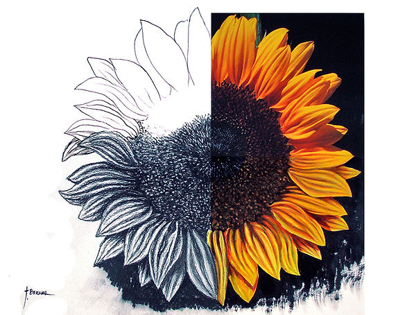Sunflower, mixed media, watercolor, painting and drawing