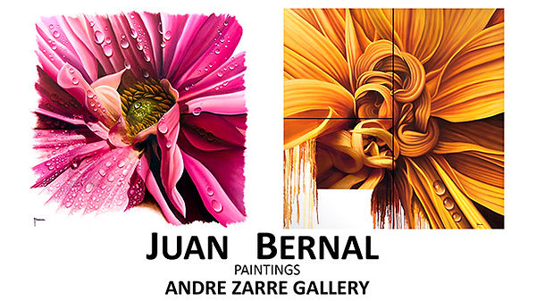 Invitacion Andre Zarre Gallery, New York.