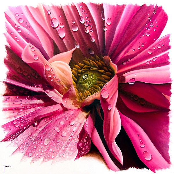 dew on a Pink Dahlia painting of nature