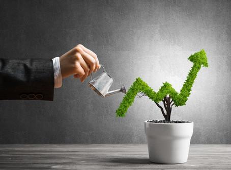 Ulga na inwestycje: Jak w 10 krokach otrzymać zwolnienie podatkowe